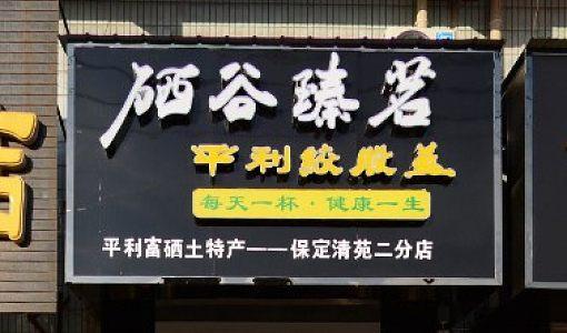 清苑绞股蓝茶